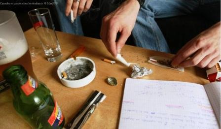 cannabis alcool eleve etude etudiant algerie